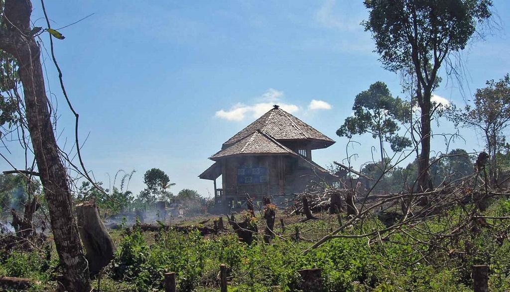 Laos Reisen - 4 Bolaven Plateau (19)