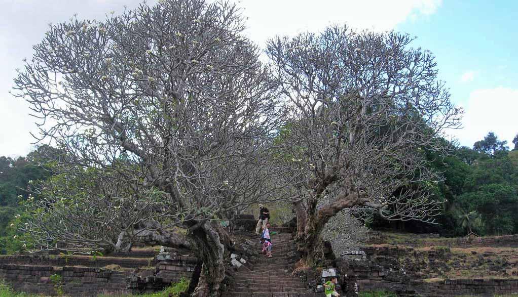 Laos Reisen - 4000 Islands Si Phan Don